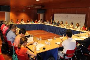 reunion_consejo_asesor_sociales copclm