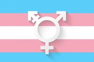 día transexual copclm